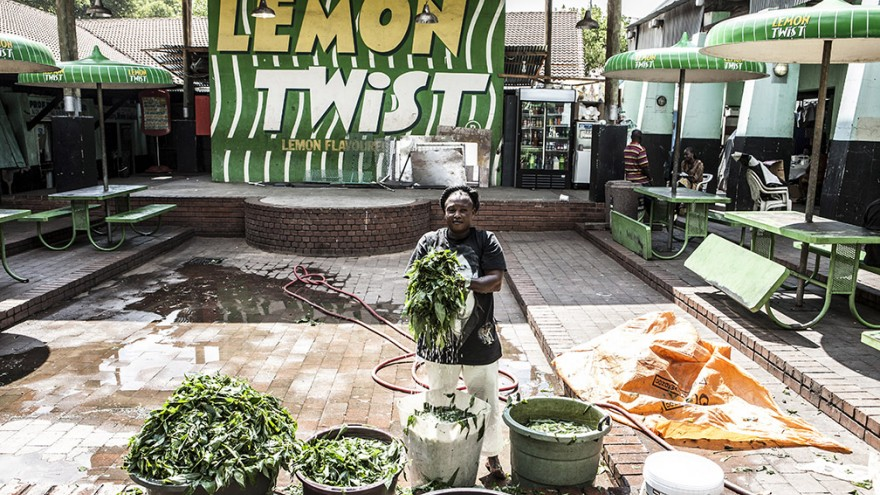 """Yeoville. """"Wake up, This is Joburg"""" is a series of 10 books that tells the stories of the peculiar urban inhabitants of Johannesburg. Image: Mark Lewis"""
