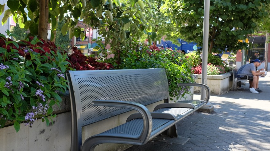 A divided public bench in Yaletown