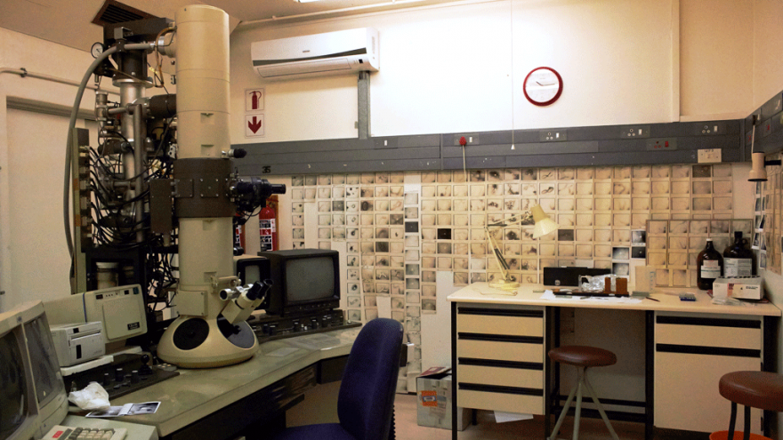 Picture Credit: Kathryn Smith. Description: Roodeplaat Research Laboratories. August 2014.