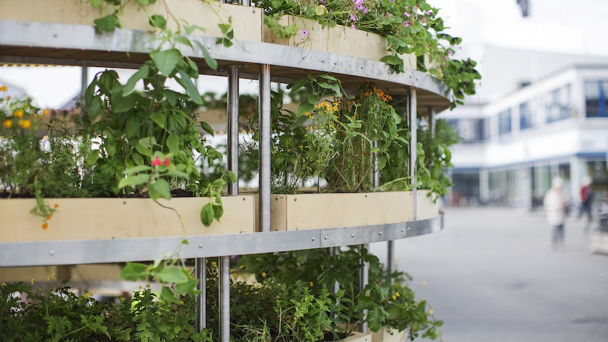 The Growroom by Space10. Image: Alona Vibe