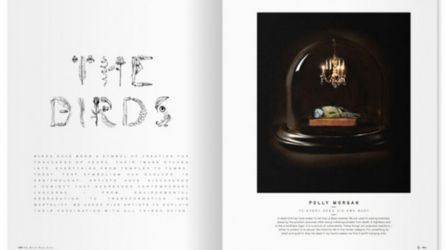 Little White Lies magazine, in collaboration with David Carson.