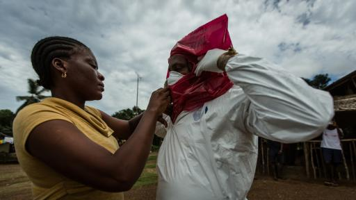 Fighting Ebola: Grand Challenge for Development.