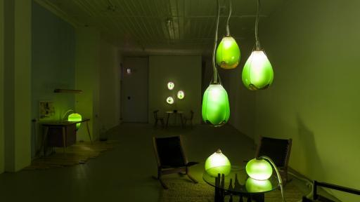 """Jacob Douenias and Ethan Frier's exhibition """"Living Things"""", photos by Tom Little, courtesy of the Mattress Factory"""