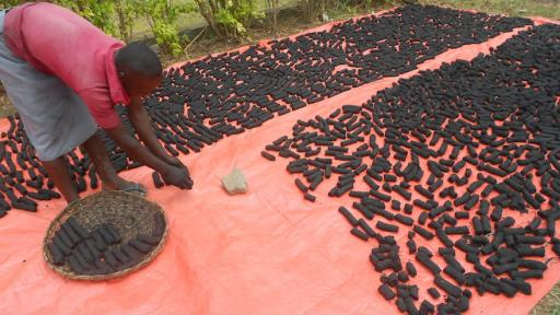 Ugandan Betty Ikalany founded AEST Ltd in order to help women in her community have access to clean cooking fuel