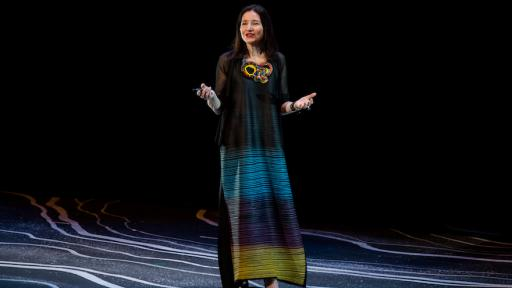 Ayse Birsel at Design Indaba Festival 2017