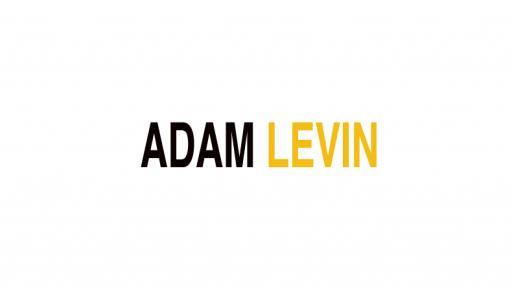 Adam Levin on South African fashion