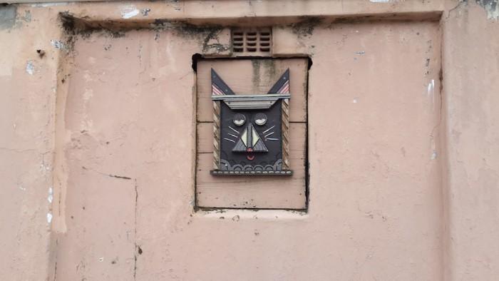 Cat's head.