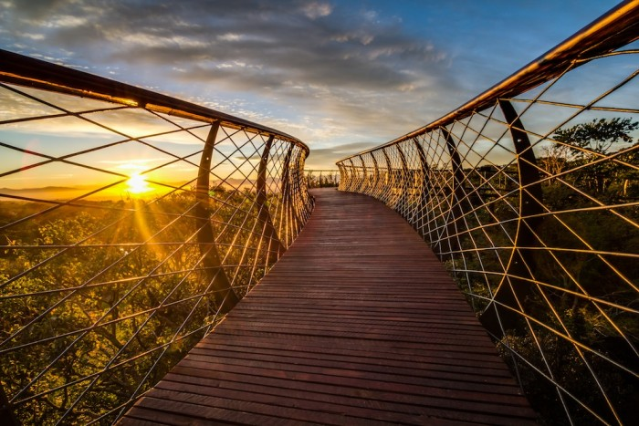 2015: The Boomslang in Kirstenbosch Botanical Gardens by architect Mark Thomas and engineer Henry Fagan
