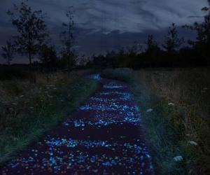 Van Gogh Bicycle Path by Daan Roosegaarde