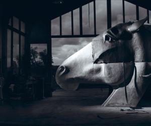 Nic Fiddian Green's massive sculptures of horses' heads are now standing all around the world.