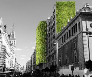 Madrid + Natural