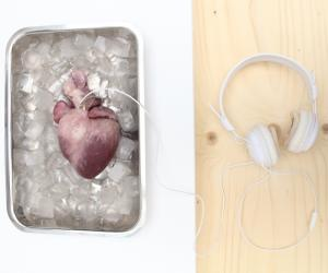 Listening to your heart by Material Futures graduate Lesley-Ann Daly