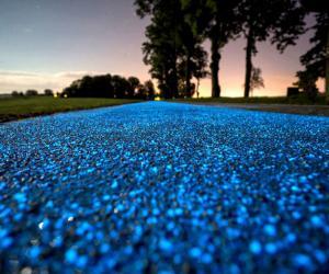 Poland's Illuminating Bike Path