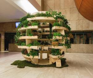 Growroom: Image Alona Vibe