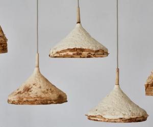 Mycelium + Timber