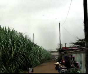 Cazenga informal settlement