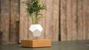 The zero gravity Lyfe planter