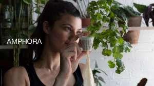 Dirt-free herb farming for urban dwellers