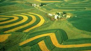 Aerial view of contour strip farming. | Picture by Wisconsin Department of Natural Resources