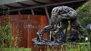 Dylan Lewis sculpture at Kirstenbosch.