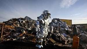 Cape Mongo (Metal). Image: Anton Scholtz